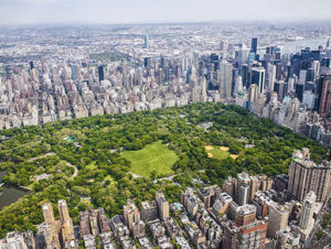 Overview of Central Park in New York City