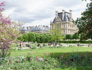 A view of the Louvre Palace Museum from Tuileries Garden