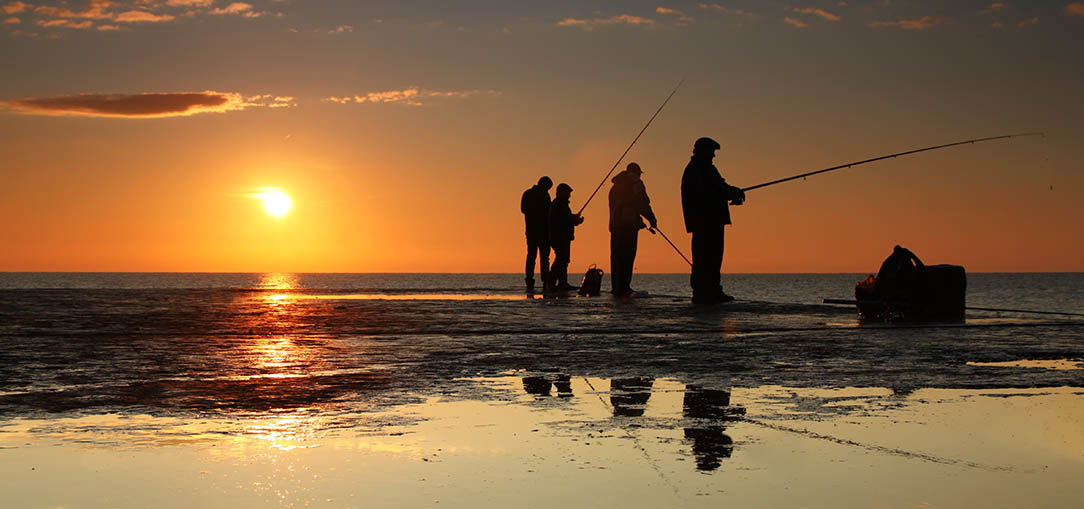 Group of people fishing on a pier at sunset