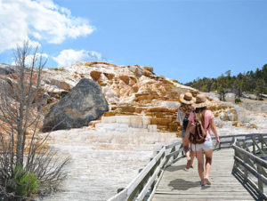 Girls walking on boardwalk on a sunny day in Mammoth Hot Springs in Yellowstone