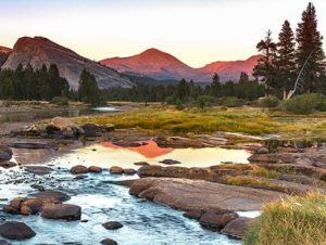 The summer sun begins to rise and reflects in the stream on an early morning in Tuolumne Meadows.