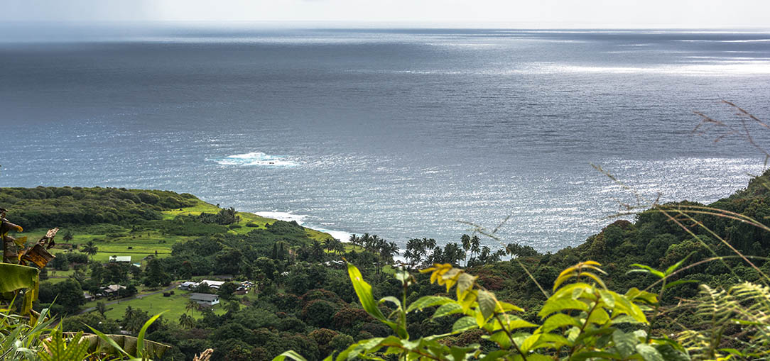 A spectacular view of the ocean and lush green landscape from the Hana Highway in Maui, Hawaii