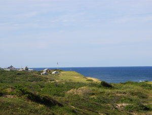 Bright green grass in the foreground with the blue ocean and clear blue sky in the background on a seashore in Cape Cod, Massachusetts