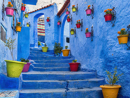 Colorful flowerpots decorate blue walls and stairs in Morocco