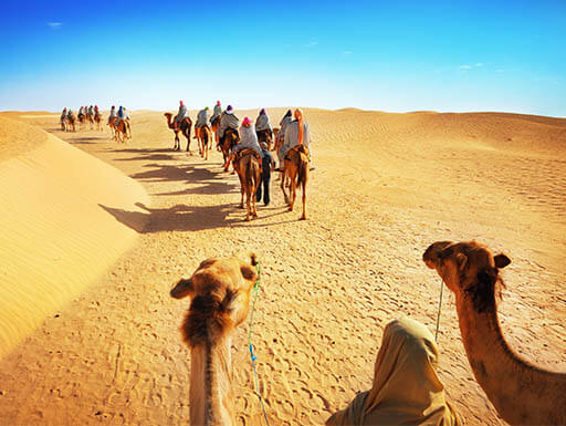 Group of people riding camels across the Sahara Desert on a hot day