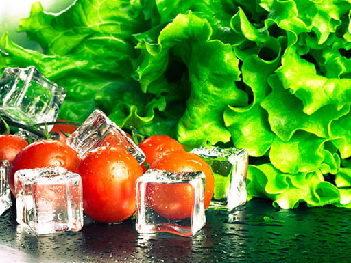 Fresh lettuce and cherry tomatoes with ice cubes on a table in St. Augustine, Florida