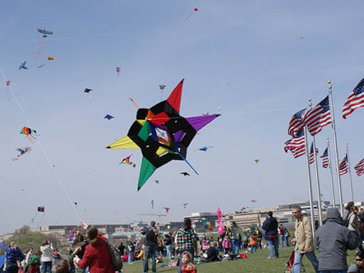 People flying kites in a sunny field during the 2010 Cherry Blossom Kite Festival
