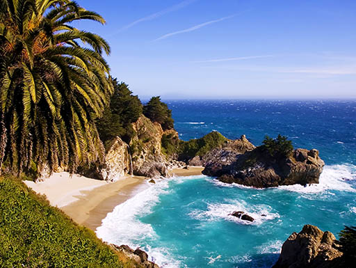 blue sky over palm trees and ocean at McWay Falls, Big Sur, California