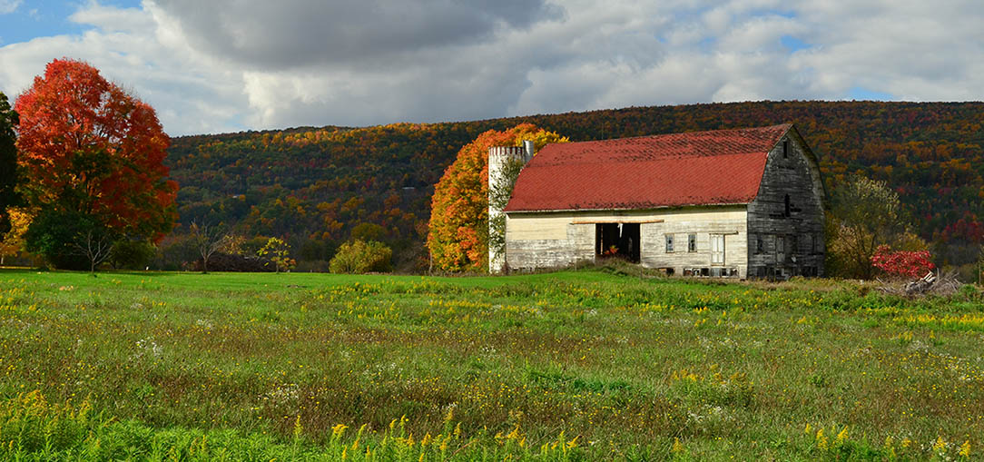 View of an old, white barn with a red roof in a pasture on a cloudy Autumn day