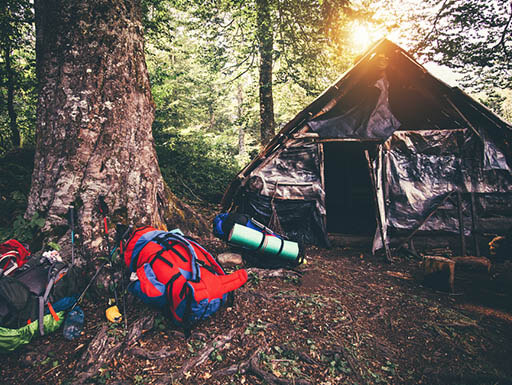 Hiker's Backpacks, filled with camping gear, lay on the ground outside shelter as the sun sets through the trees.