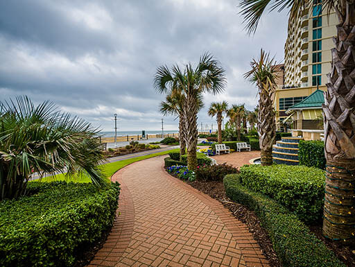 landscaped with palm trees, a red brick walkway winds around buildings in Virginia Beach on an overcast day