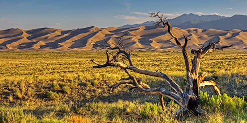 Sunrise at Great Sand Dunes National Park and Preserve; San Luis Valley near Alamosa, Colorado.
