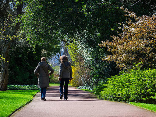 Two women walking down a sidewalk in a lush green park as they try to de-stress.