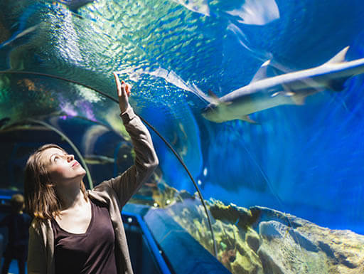 A blonde teenage girl is pictured looking up and touching the glass of an indoor aquarium at the Dallas World Aquarium in Dallas, Texas on a summer morning.