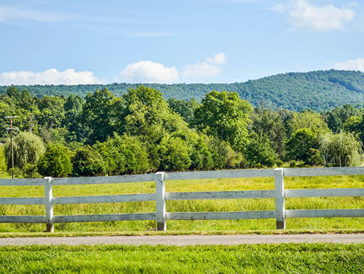 virginia countryside in summer; white fence on farm with trees and blue sky