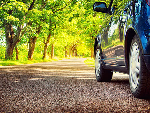 The lower half of a shiny blue car sits on the pavement, with bright green trees in the background in the Red Hills region just outside Tallahassee, Florida