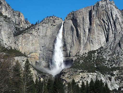 View of the Tokopah Falls at Sequoia National Park on a clear, sunny day shows the waterfall cascading off of a rocky cliff above a line of trees