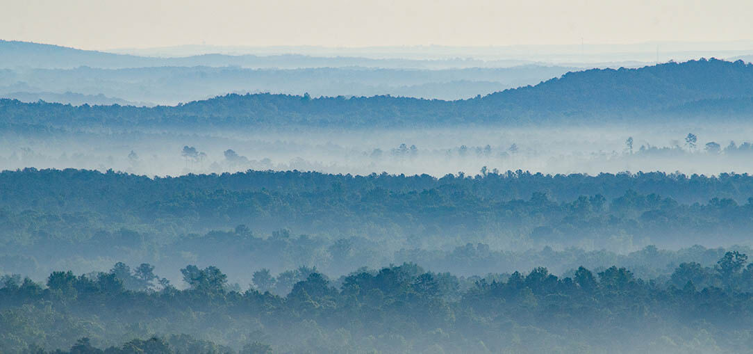 Fog rolls through the green, forested hills of Talladega National Forest on an early morning.