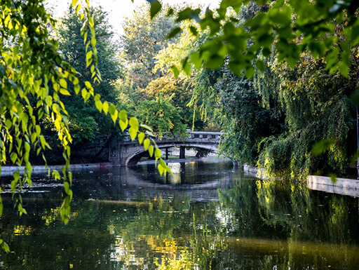 View of lush green trees of an old stone walking bridge over a lake with still water in Cismigu Park in Bucharest, Romania.