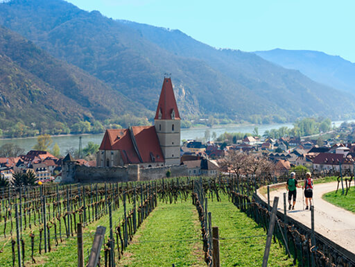 View of a couple walking along the Wachau World Heritage Trail in the Wachau Valley next to grapevines with historic buildings nearby.