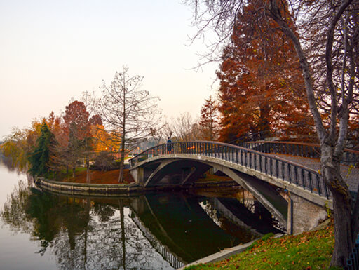 A pedestrian bridge over the lake in Herastrau Park in Bucharest is surrounded by trees with fall foliage on an early evening in autumn in Romania.