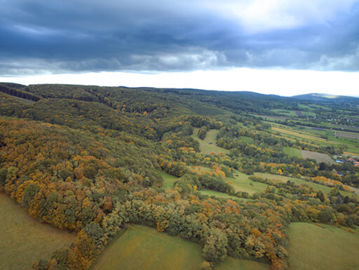 An aerial view of Vienna Woods shows trees with leaves beginning to change under dark storm clouds on a rainy day in autumn near Vienna, Austria.