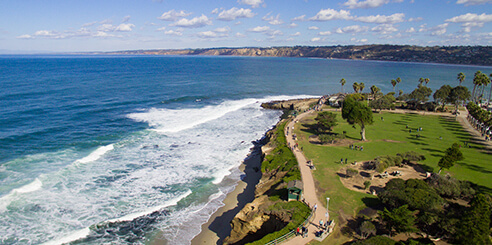 Aerial view of people walking along the La Jolla coast on a sunny afternoon with green grass and palm trees in the distance.