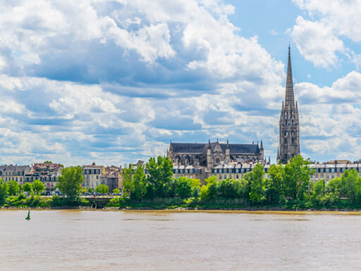 Daytime view of Saint Michel basilica surrounded by lush green trees, taken from across the river in Bordeaux, France.