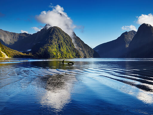 "Alt=""The beautiful mountains of Milford Sound reach up to the clouds surrounded by a bright blue sky, all reflected by the water in the foreground in Milford Sound, New Zealand"