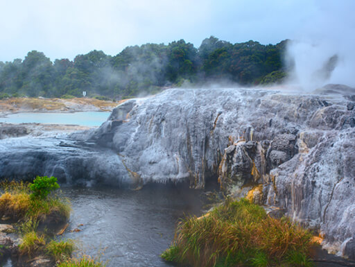 Bright green and yellow bushes are seen in front of water with sulphur-covered cliffs, with steam coming up from the water in Rotorua, New Zealand