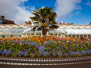 A daytime view of a greenhouse and colorful blooming flowers with a palm tree at Belfast Botanic Gardens in Northern Ireland.